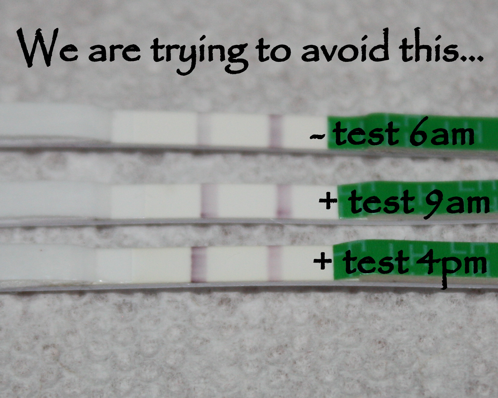 opk test strips instructions