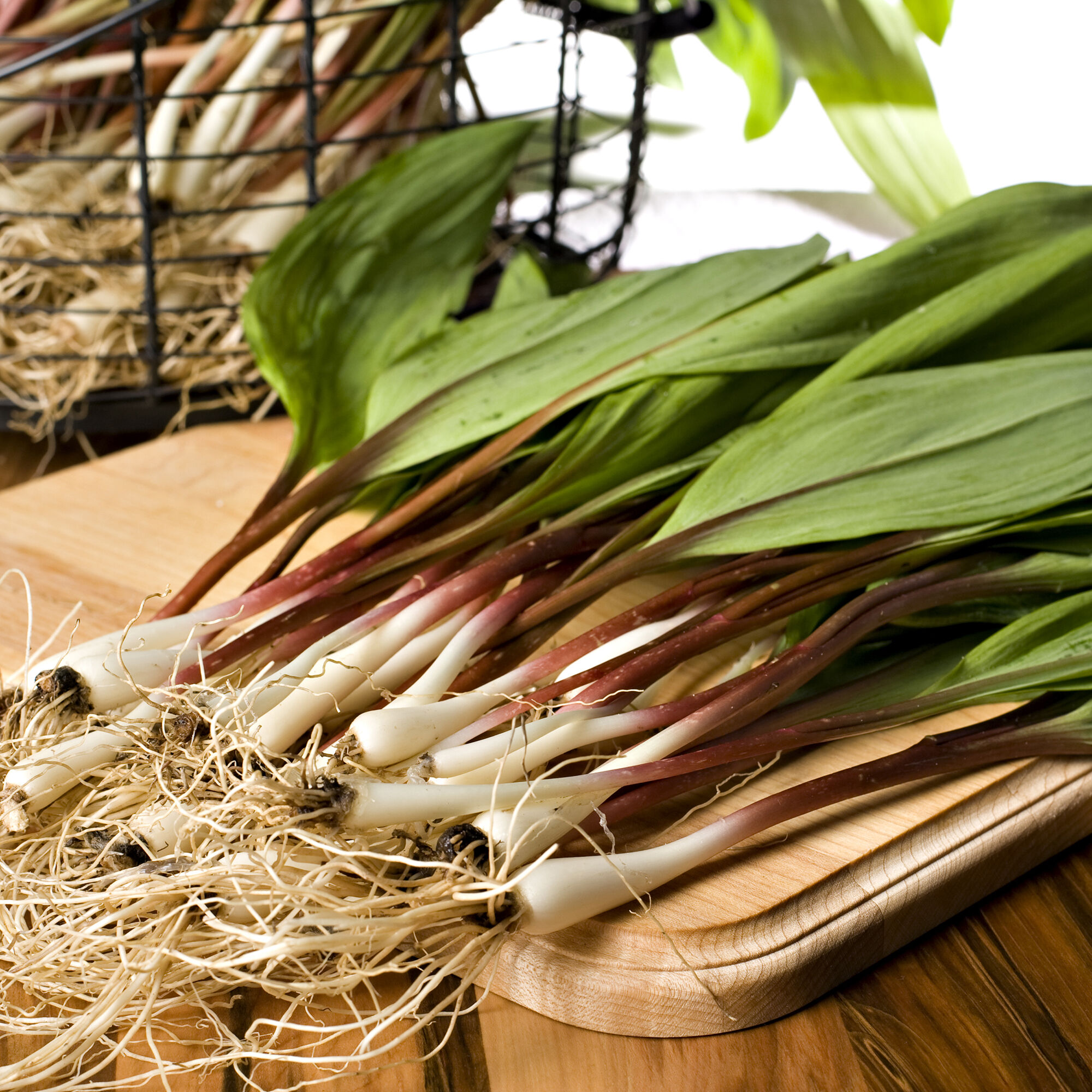 Wild ramps how to cook