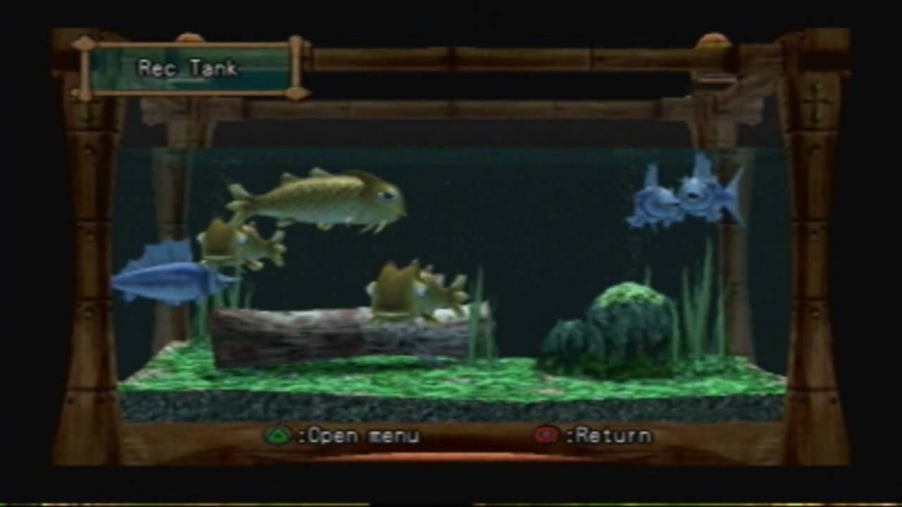 Dark cloud 2 fishing guide